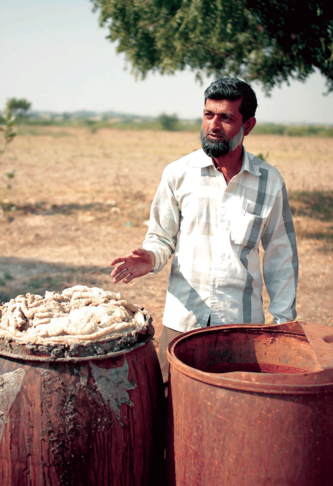 Preparation of natural dyes