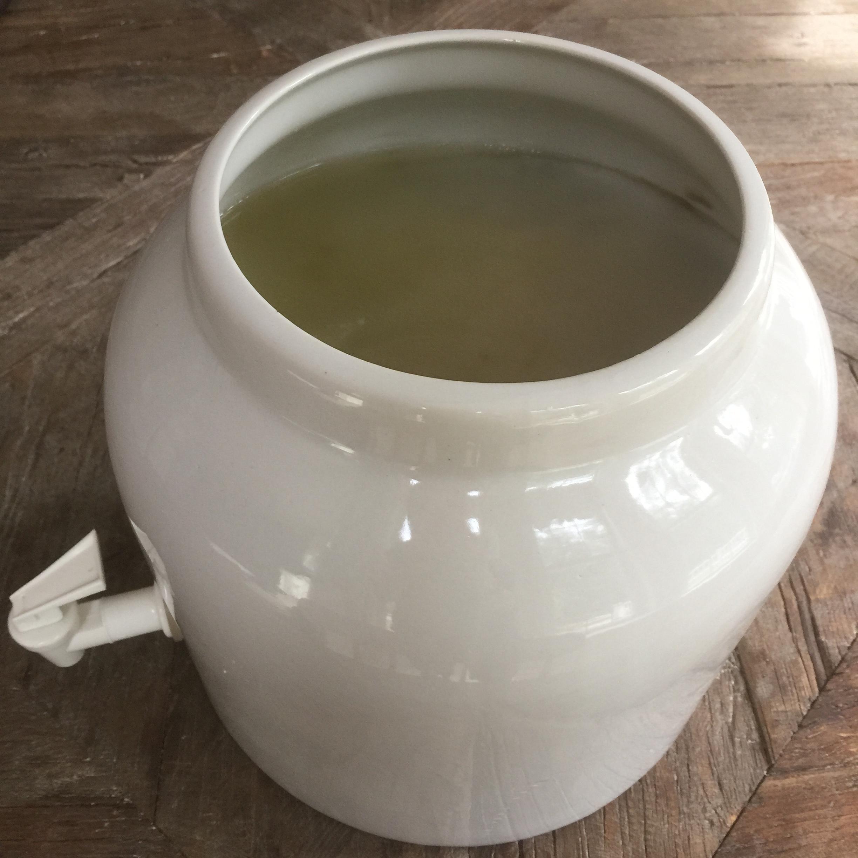 Large brew of plain kombucha