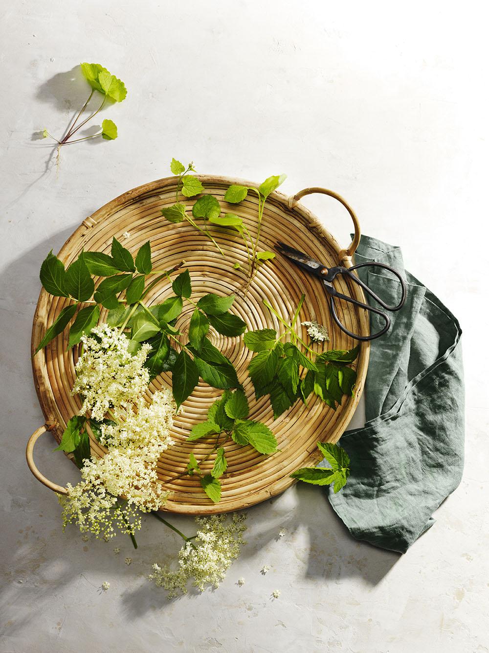 """Vilda växter"", styling & recept. Foto: Elin Sylwan"