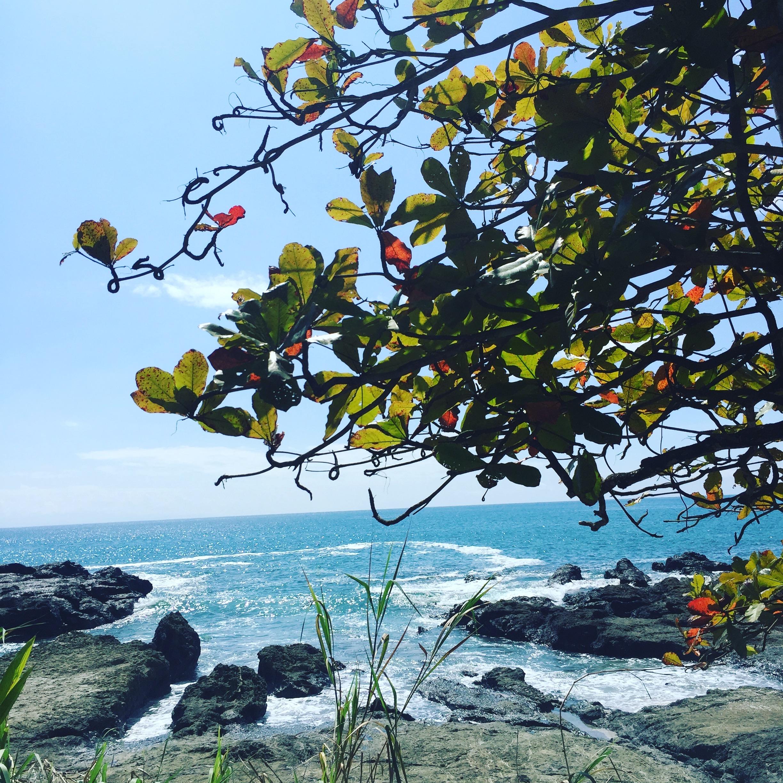 Cabuya beaches.jpg