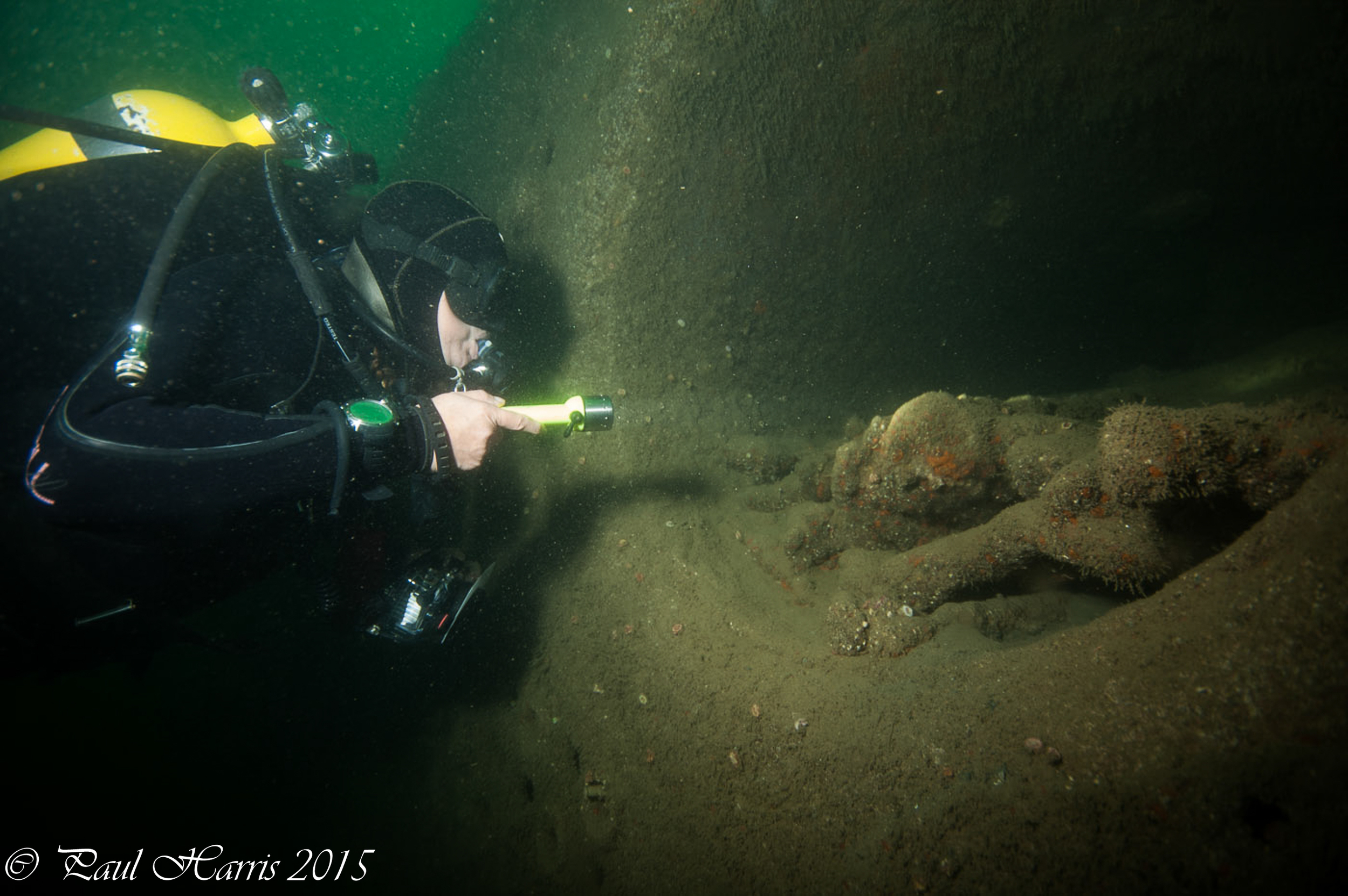 wreckage and diver_7155.jpg