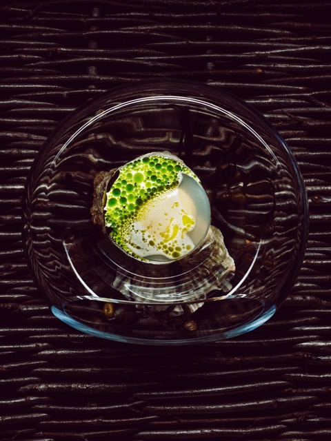 Norwegian oyster with mussels and dill Credit: Tuukka Koski