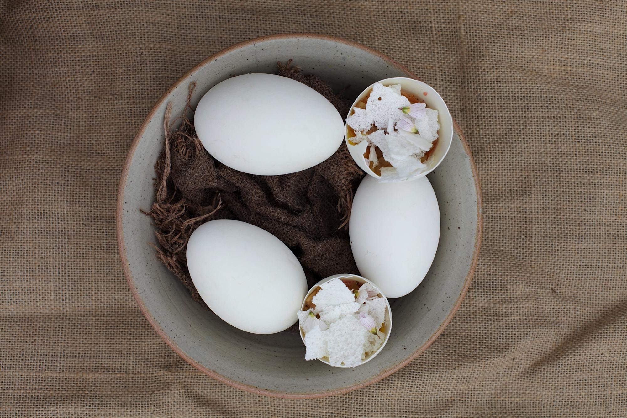 Duck egg, rhubarb, wood sorrel