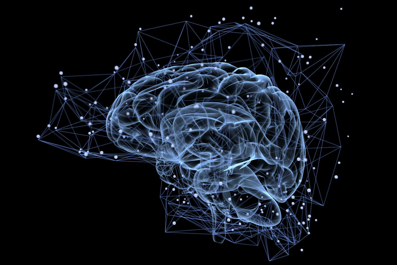 brain-stock-photo.png