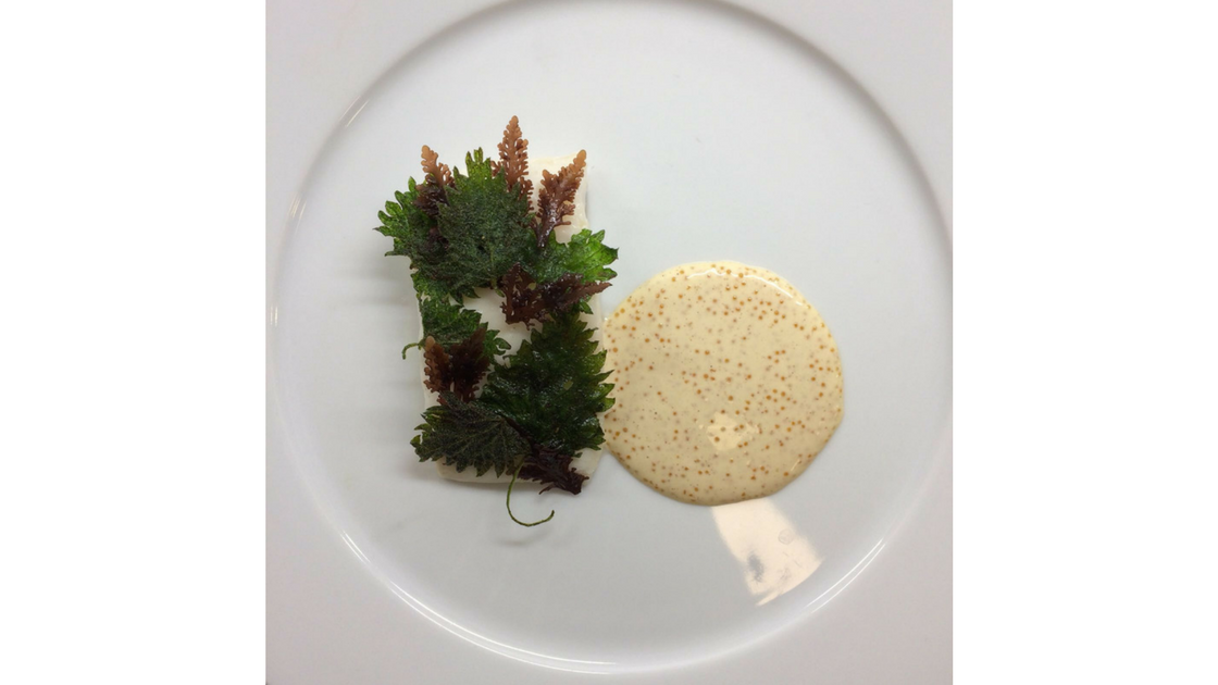 nordic cuisine image 1.png