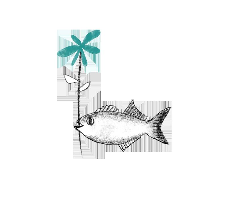 fish copyB.png