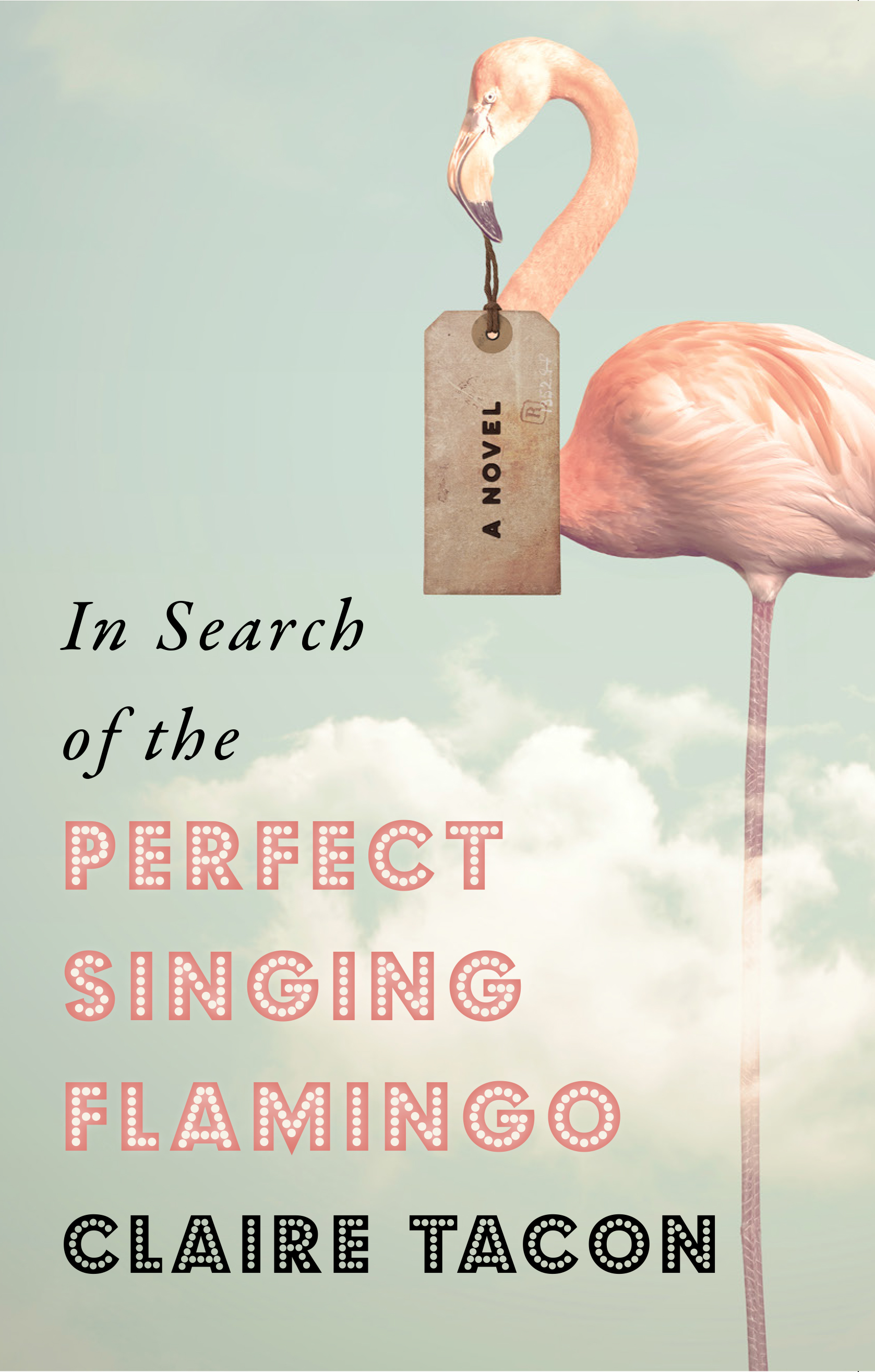 Perfect Singing Flamingo_high.jpg