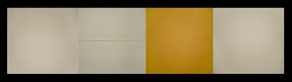 """""""Mass Yellow Field"""""""
