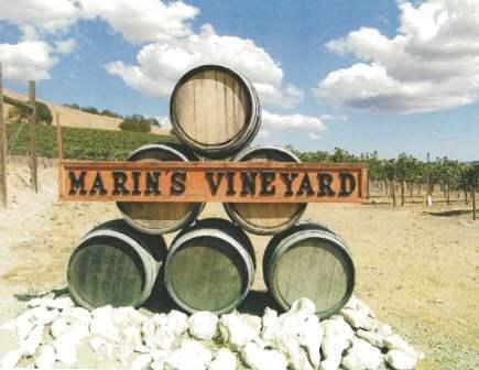 vineyardsign.jpg