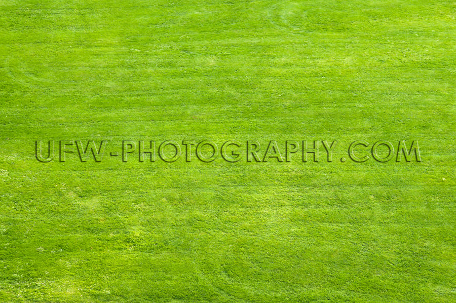 Lawn area for playing, sunbathing and relaxation - Stock Image
