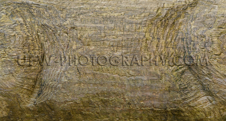 Rough wood background grungy damaged weathered gray textured Sto