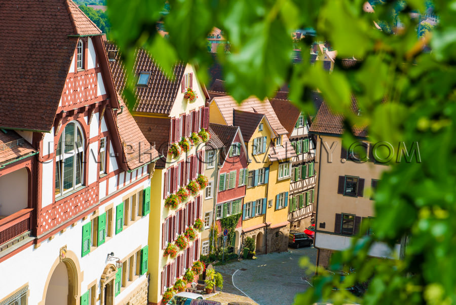 Half-timbered houses idyllic medieval town framed by leaves Stoc