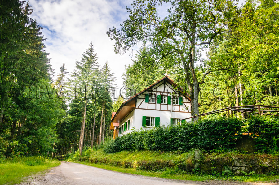 Remote cottage house renovated forest dirt road trees sky Stock