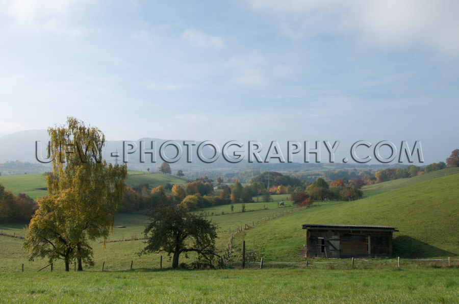 Autum hill landscape green pasture, colorful trees, blue cloudy