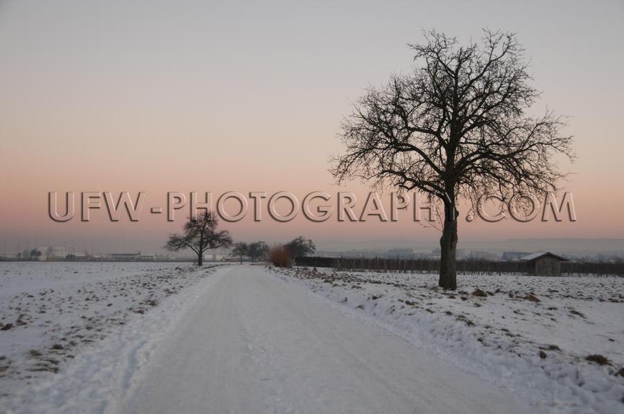 Beautiful winter scene snowy country track tree orange sunset su