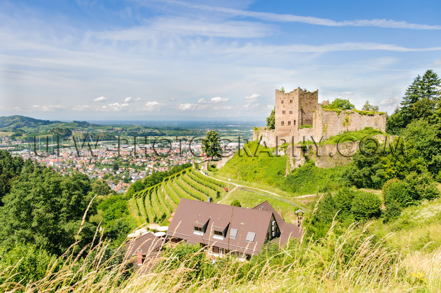 Castle ruin on a hill, vineyard and little town - Stock Image