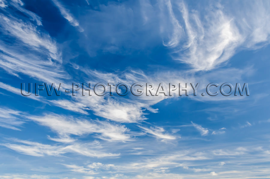 Cirrus clouds frayed delicate texture dark blue sky Stock Image