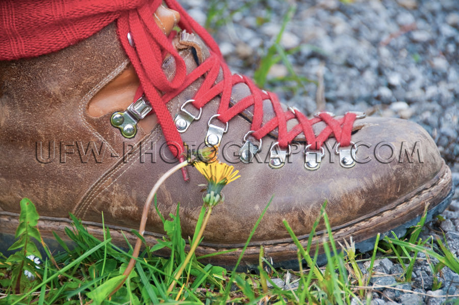 Rough hiking boot with red shoe strings, outdoors - Stock Image