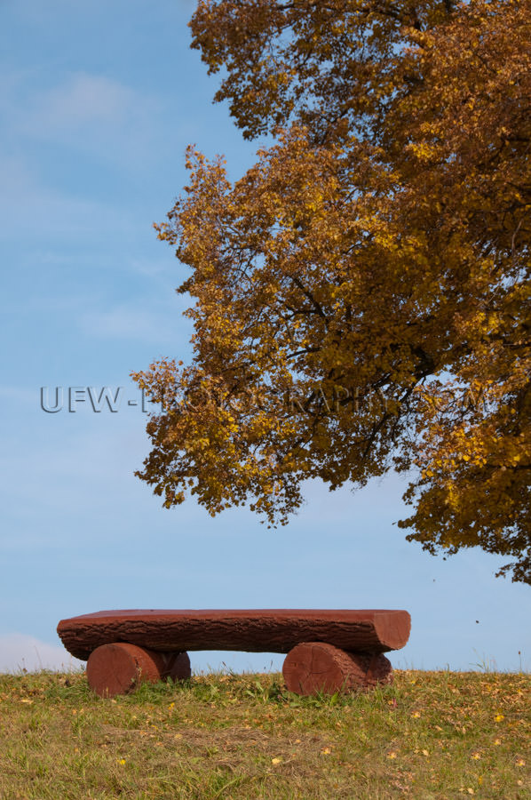 Maroon colored log bench under an idyllic autumnal lime tree Sto