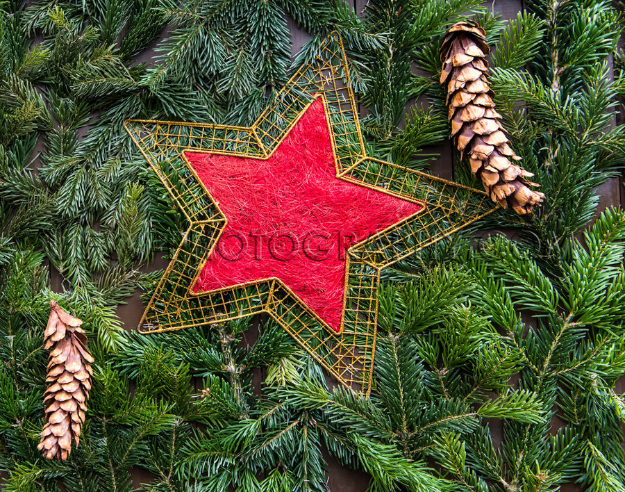 Christmas decoration fir twigs pine cones red golden star Stock