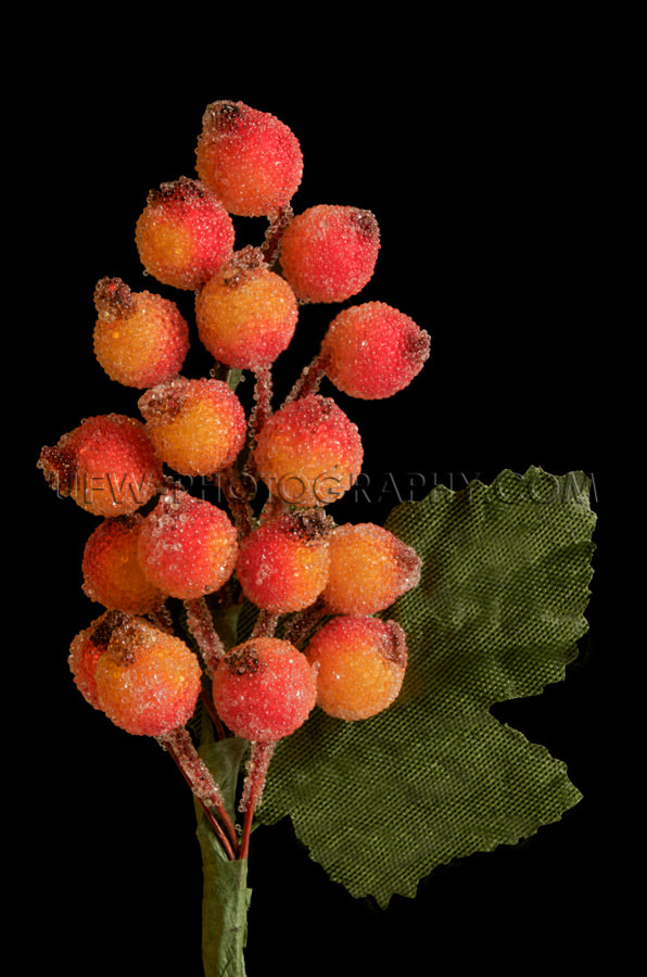 Christmas decoration frosted red orange berries green leaves, bl