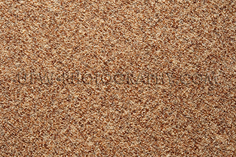 Wall-to-wall carpet loop fabric speckled brown pattern full fram