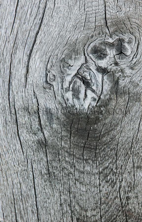 Knorrig Holz Grob Grau Brett Planke Grunge Hintergrund Gesprunge