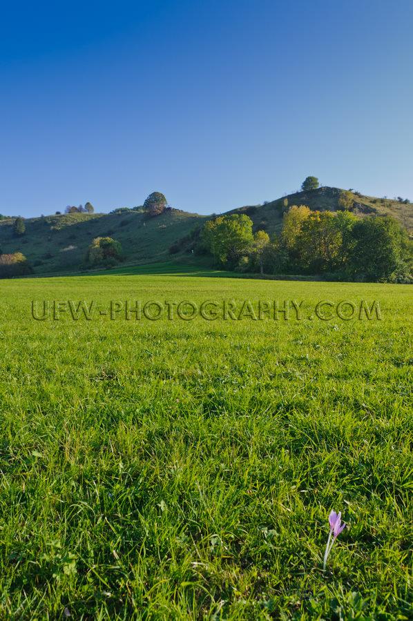 Hügelige Landschaft Im Herbst Vor Blauem Himmel Stock Foto