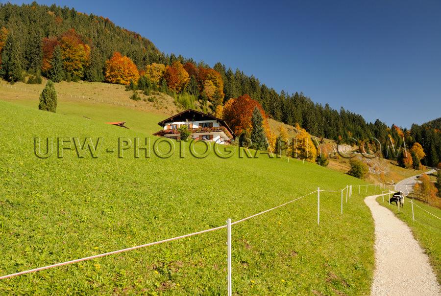 Sonniger Wanderweg Herbst Berglandschaft Alm Weide Wiese Bauernh