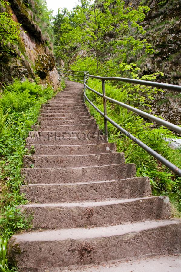 Steile Treppe Grün Felsig Schlucht Klamm Stock Foto