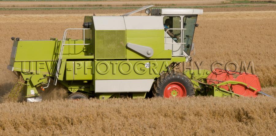 Mähdrescher Erntemaschine Arbeiten Feld Landwirtschaft Stock Fo