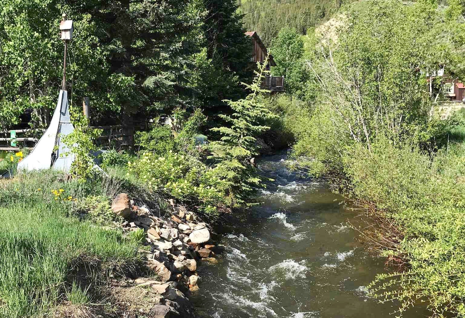Coal Creek at the edge of town in Crested Butte.