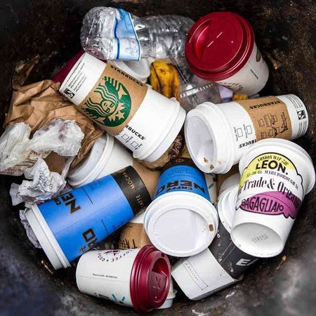 Even single-use coffee cups have plastic in their interior lining.