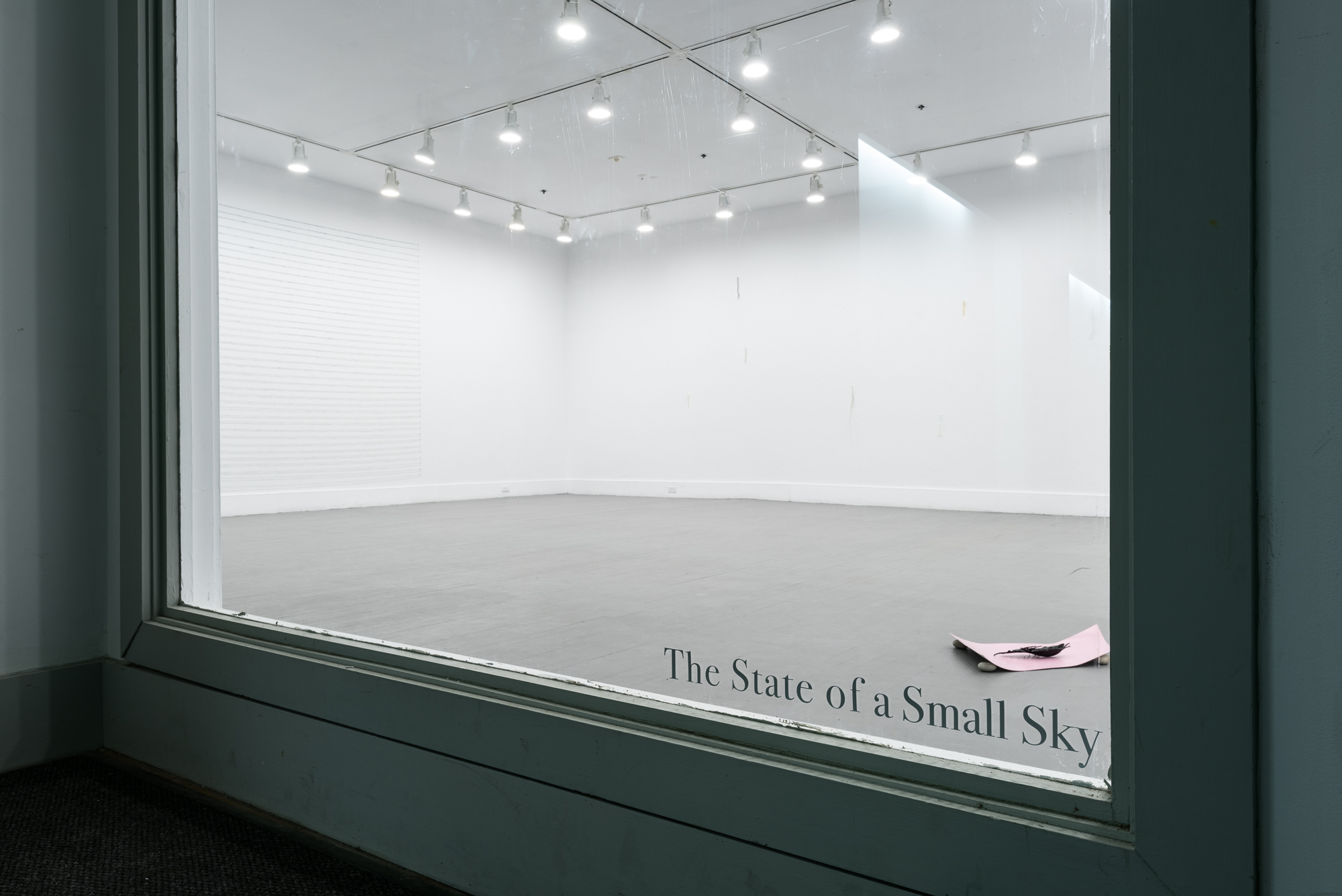 The State of a Small Sky , Zavitiz Gallery, 2016  Documentation by Peter Denton