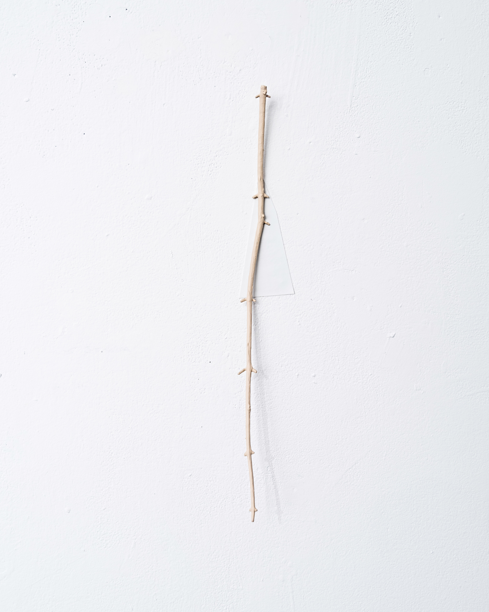 Limb Drop,  dimensions vary, acrylic paint on found twigs, acrylic paint on paper, 2016. Detail   The State of a Small Sky , Zavitiz Gallery, 2016  Documentation by Peter Denton