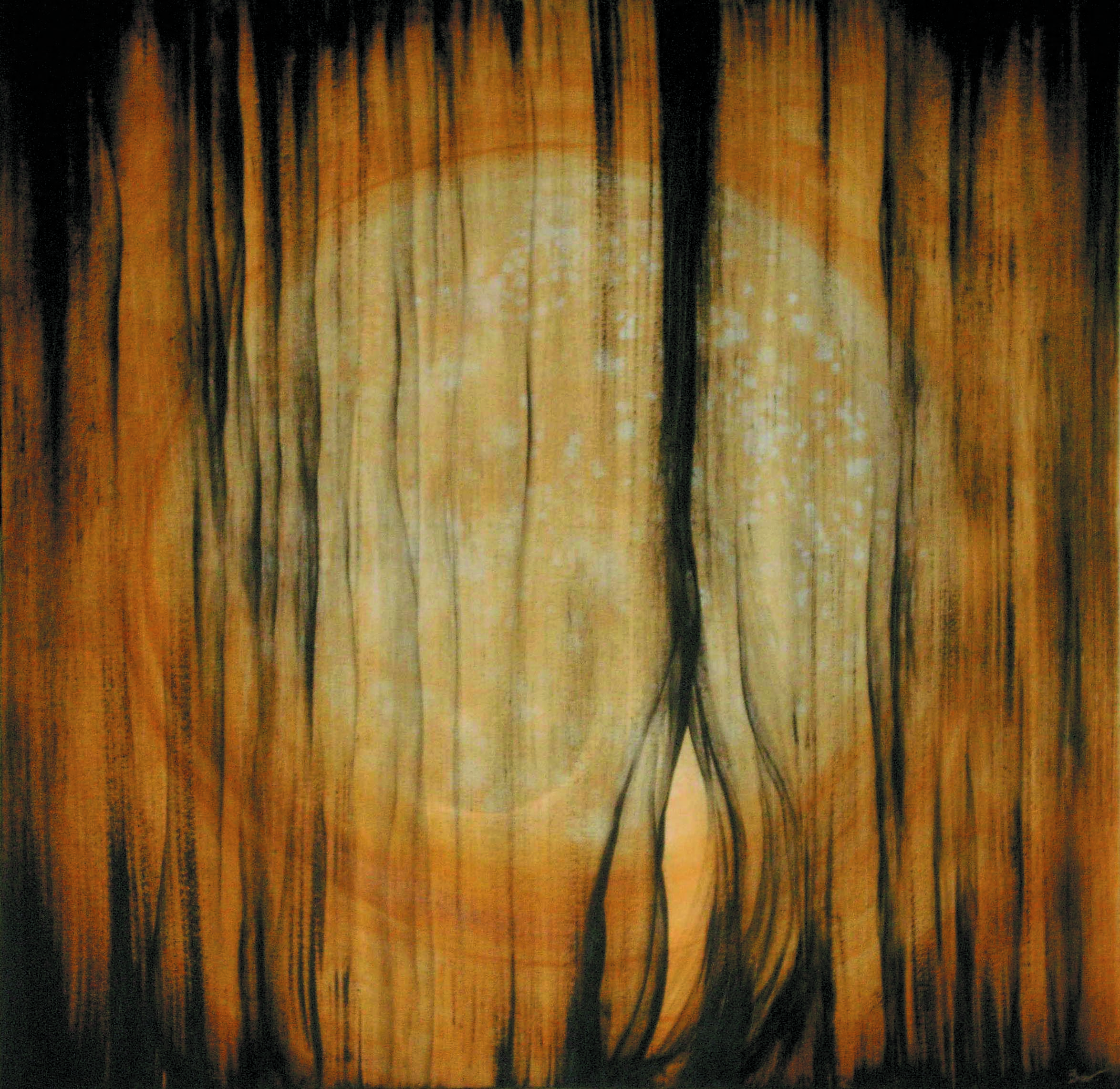BERGONZI-03-Veil.jpg