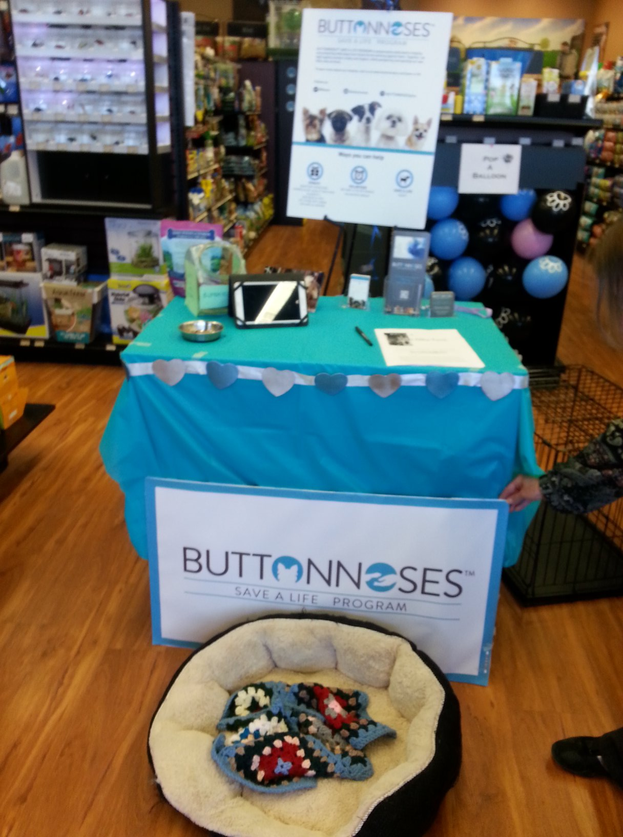 BUTTONNOSES booth at the adoption event