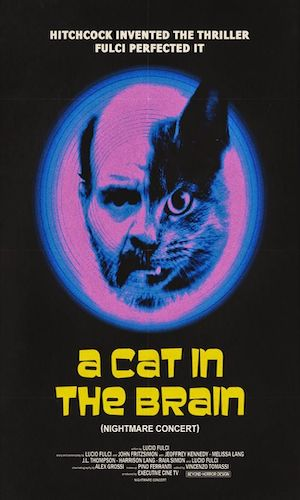 Cat in the Brain - Dir. Lucio Fulci   imdb synopsis: A horror film director is stalked by a mad psychiatrist/serial killer bent on killing people to model the killings after the director's gory death scenes from his movies.