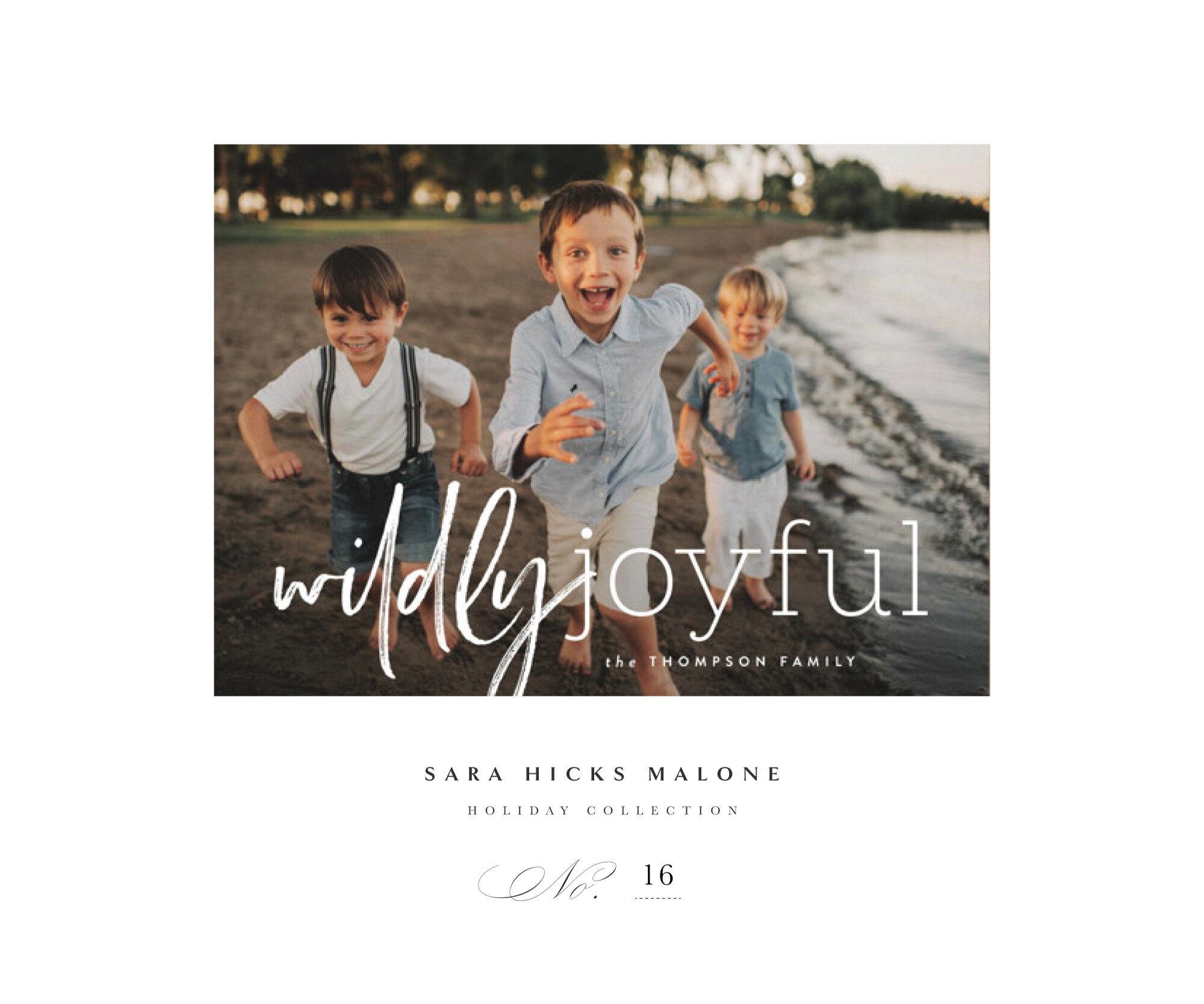 'WILD AND JOYFUL' by Sara Hicks Malone