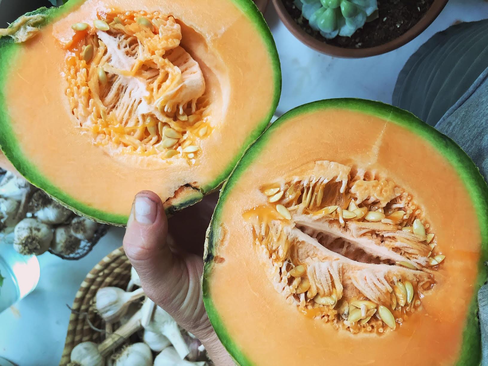 Cantaloupe.jpg