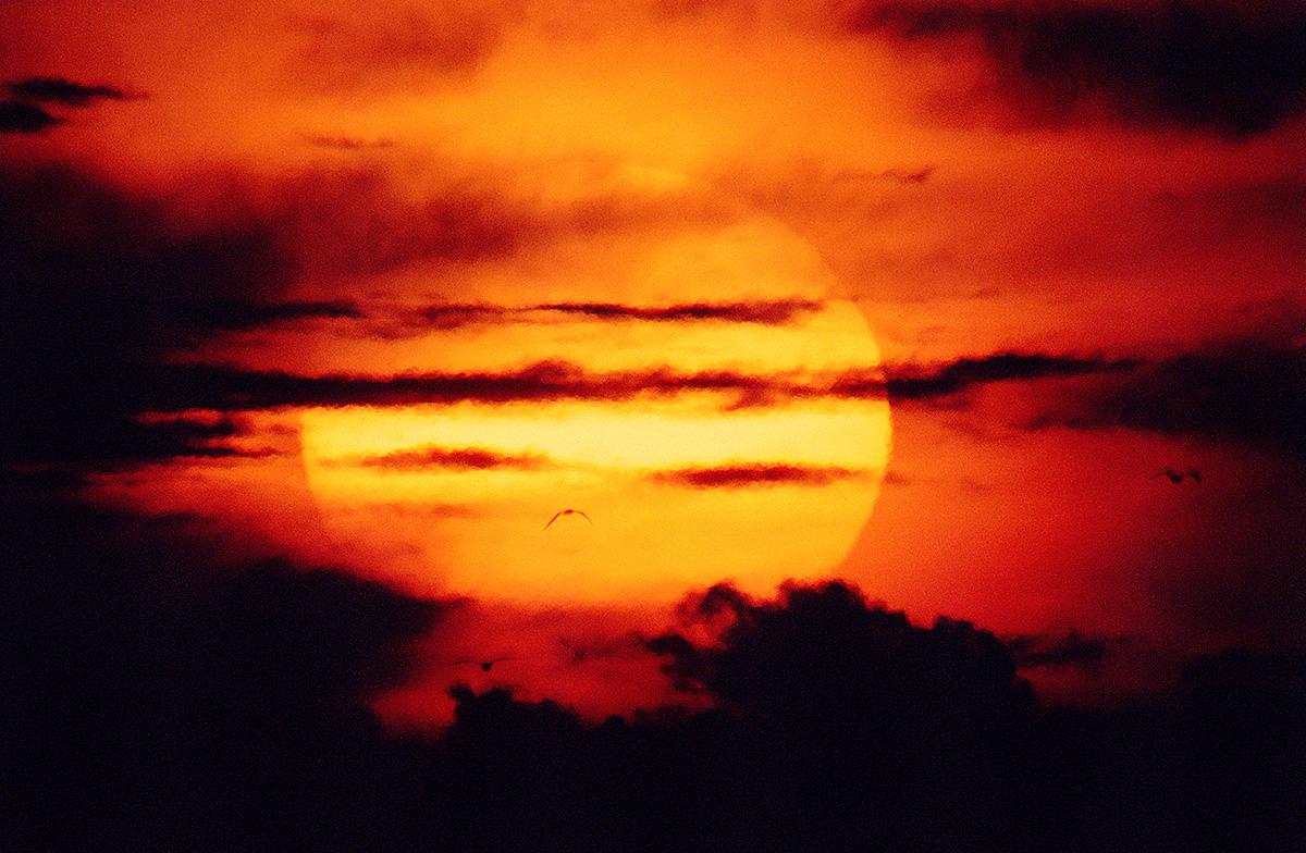 sun001CCcrop.jpg