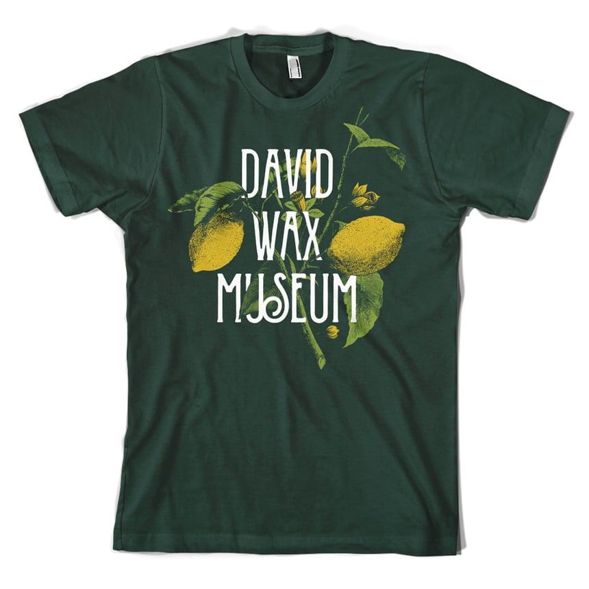 DWM-Lemons