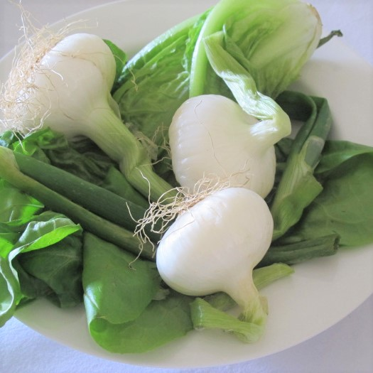 spring onions & the lettuce