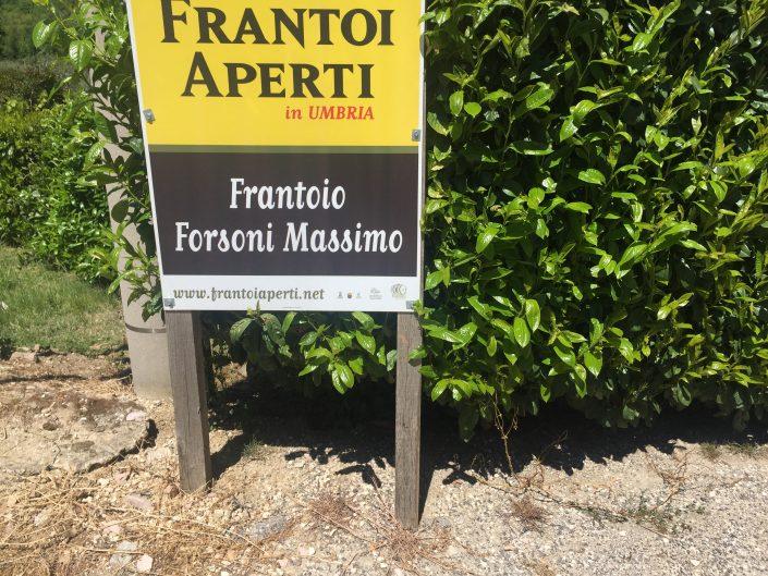 Giannoni Selections 3.jpg
