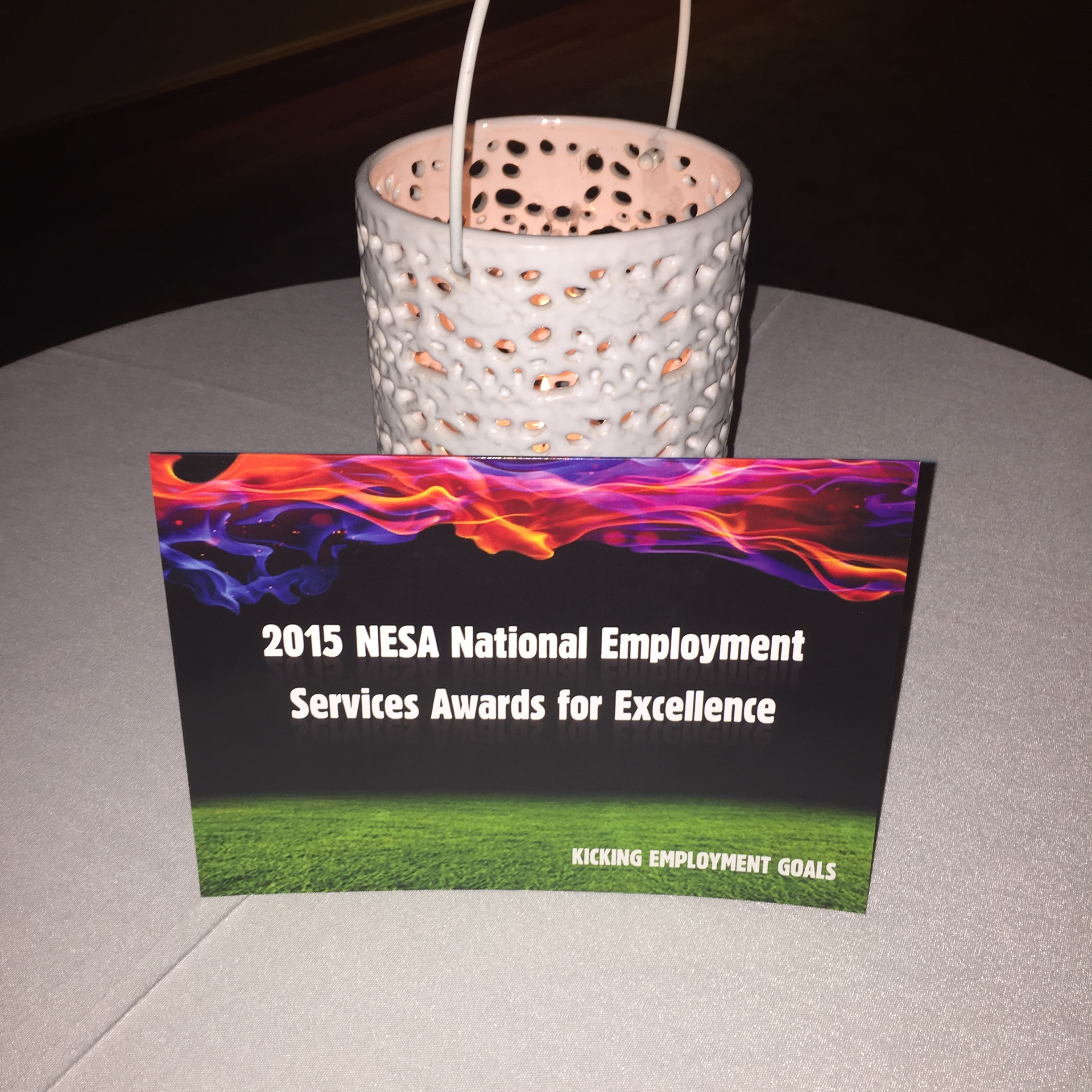 Celebrating achievements at the NESA Awards for Excellence