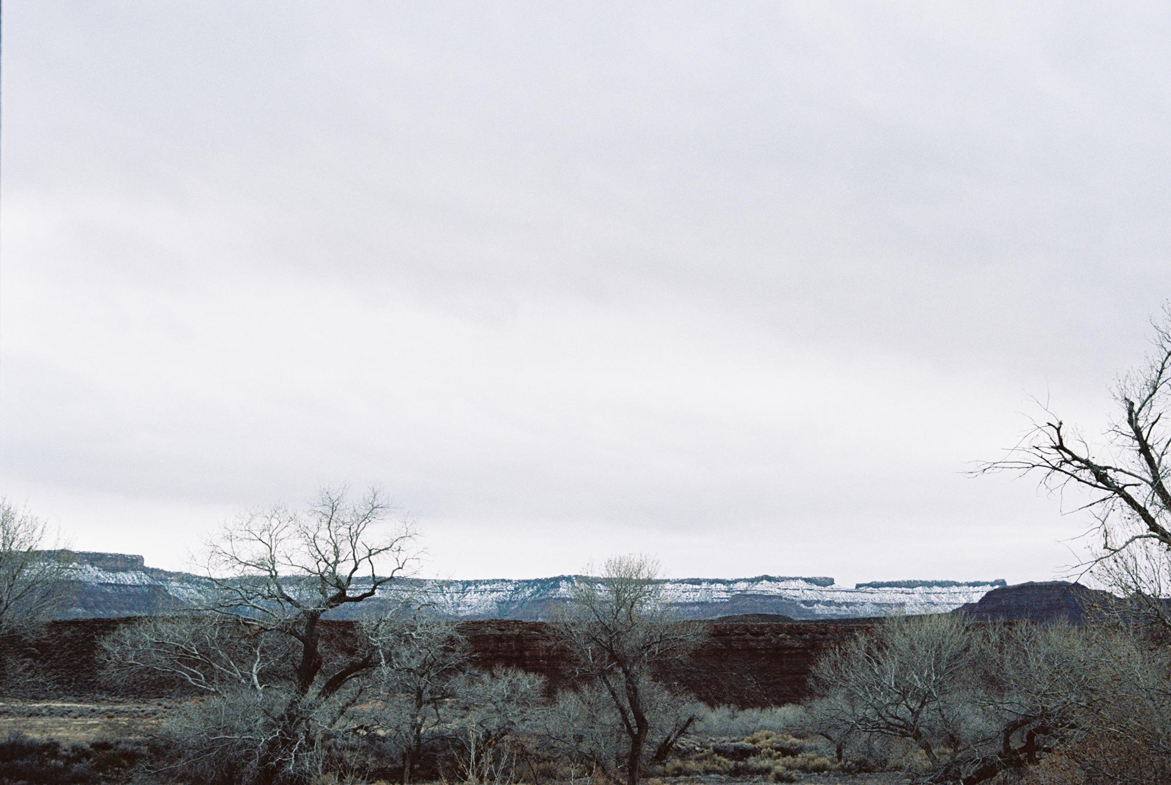 Iciar J. Carrasco_Utah_Zion_4.jpg