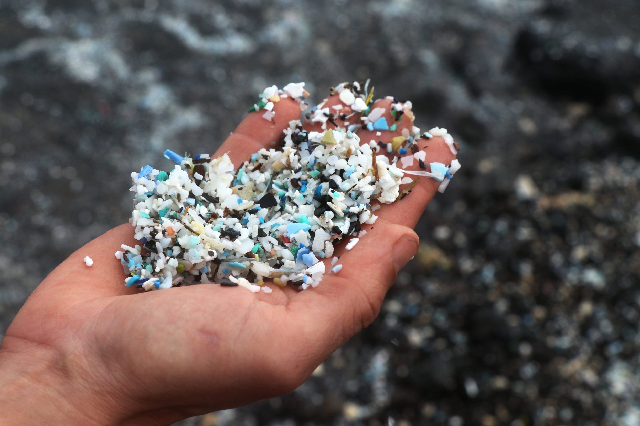 Photo: Microplastic scooped from water at Kamilo Beach, Hawaii, 2016. ©Erica Cirino