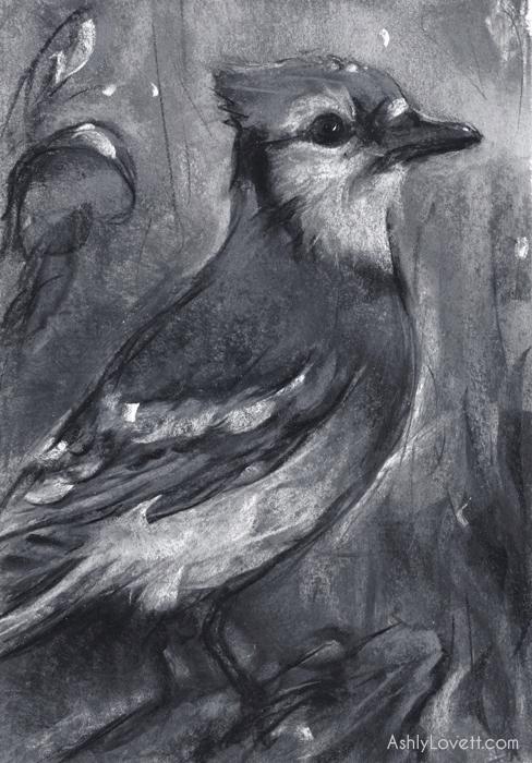 AshlyLovett-bird.jpg