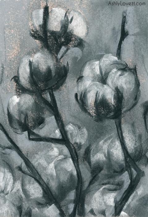 AshlyLovett-cotton.jpg