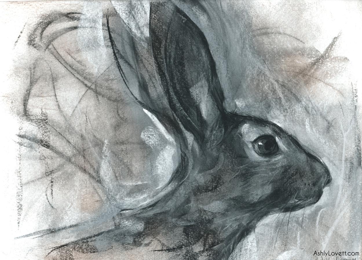 AshlyLovett-rabbit.jpg